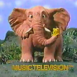 MTV Elephant
